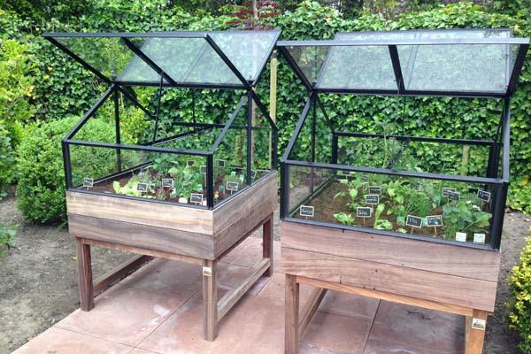 les serres pour potager sur table les potagers de thomas vente et livraison de. Black Bedroom Furniture Sets. Home Design Ideas